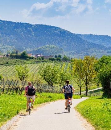 Cycling tour along rivers in the Austrian wine region